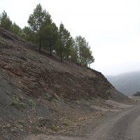 Где-то в горах :: Светлана marokkanka
