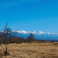 Долина у гор :: Анатолий Иргл