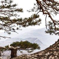 Окно на горы... :: Иван Синковец