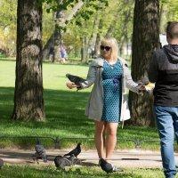 Ручные голуби :: Alena Cyargeenka