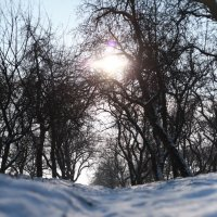 зима :: Василь Венгер