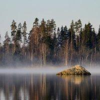 В молчаньи утреннем.... :: Юрий Цыплятников