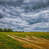 Кажется дождь собирается...© :: Александр Никитинский