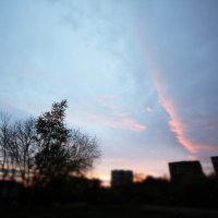 sky is mine :: Анастасия Фролова