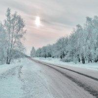 Зимой :: ОЛЬГА