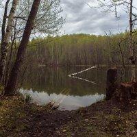 Весна на озере Конан-Ер. :: Shapiro Svetlana