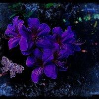 Рододендроны и бабочка :: Nina Yudicheva