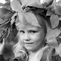 Взгляд валькирии. :: Ольга