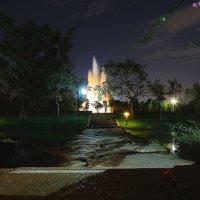 Ночной парк Бангкока :: Кирилл Охват