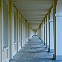 геометрия колоннады,в Ораниенбауме :: Елена
