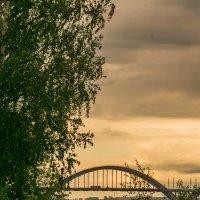 Краски дождя :: Alexandr Яковлев