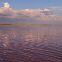 Малиновое озеро. Алтайский край 2015 год. :: Маргарита Кириллова