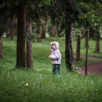 Ах , сколько лес таит в себе загадок . Гатчинский парк . :: Андрей Якимюк