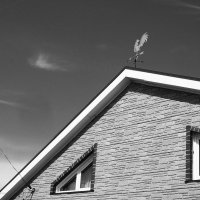 Посади ты эту птицу, — Молвил он царю, — на спицу :: Сергей Яценко