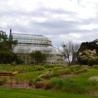Ботанический сад. :: zoja