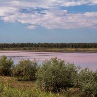 Малиновое озеро :: Галина Шепелева