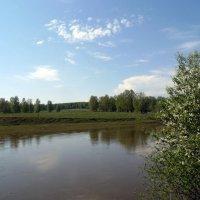 Река Иня . Берег левый. :: Мила Бовкун