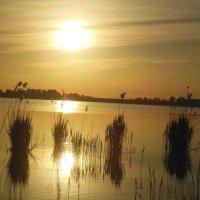 Закат над Белозерским лиманом :: Ирина Диденко
