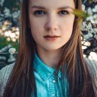 Цветение яблонь :: Екатерина Зубченко