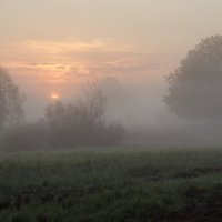 Майское утро :: Виктор Позняков