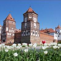 Белорусский великан Мирский замок :: Марина Симакова