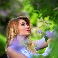 Сиреневый рай :: Еления Харченко