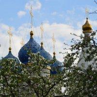 Весна православная :: Арина
