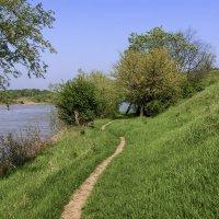 Прогулка вдоль реки :: Игорь Сикорский