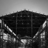 Заброшенный завод :: Александр Миронов