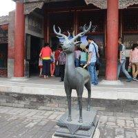 Пекин, Запретный город, олень :: Сергей Смоляр
