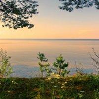 Онежское озеро :: Валерий Талашов