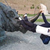 Позитив на носороге :: Павел Белоус