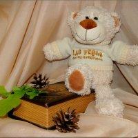 Интерьерный мишка и шкатулка книжка :: °•●Елена●•° ♀