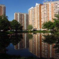 Мир с отражениями :: Андрей Лукьянов