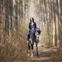 Лесной конь :: Freol Freol