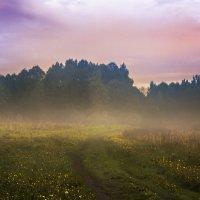 Туман :: Алексей Строганов