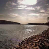 Утро на реке Рейн.. :: Эдвард Фогель