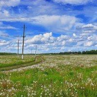 Куда  ведет  дорога......... :: Валера39 Василевский.