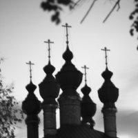 Витязи :: galina bronnikova