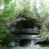 такой вот камень в лесу :: Ольга Богачёва