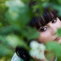 В листве :: Татьяна Губенко