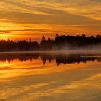 Лебединое озеро :: Николай Агапитов