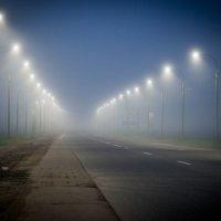 Дорога в тумане :: Денис Шевчук