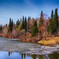 Сибирская весна :: Ильдар Шангараев
