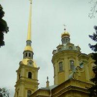Петропавловский собор в мае! (Санкт-Петербург) :: Светлана Калмыкова