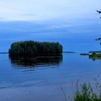 Островок на р.Шексне :: Светлана