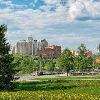 Мой город Новосибирск :: Дмитрий Конев