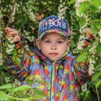Яркая весна :: Камилла Демидова