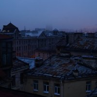 Белые ночи :: Ольга Пляцковская