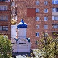 Соседство :: Татьяна Ломтева